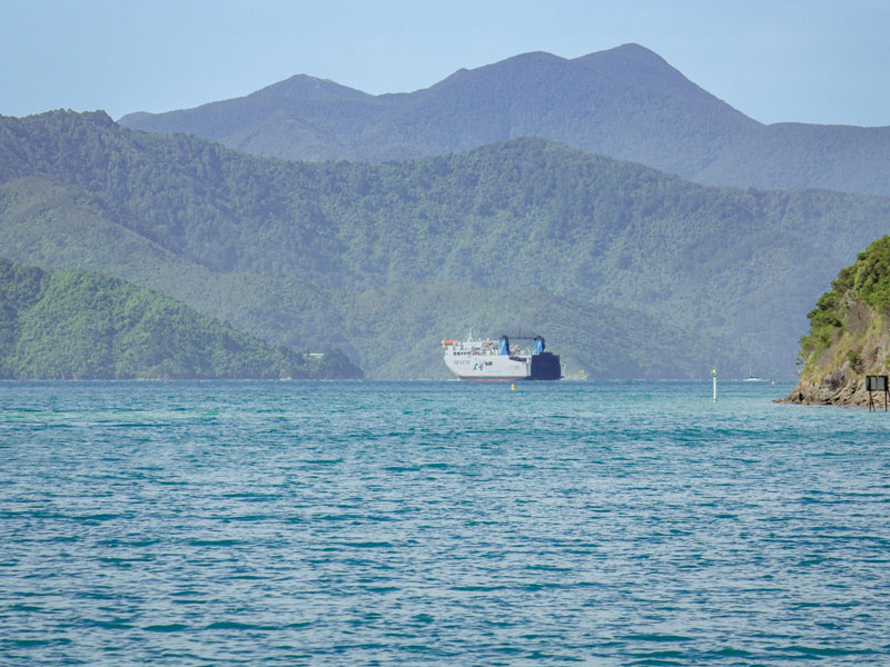 Interislander Cook Strait ferry sailing through Queen Charlotte Sound