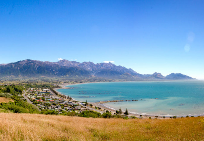 SP Kaikoura Peninsula Lookout one of the top things to do in Kaikoura 730x504