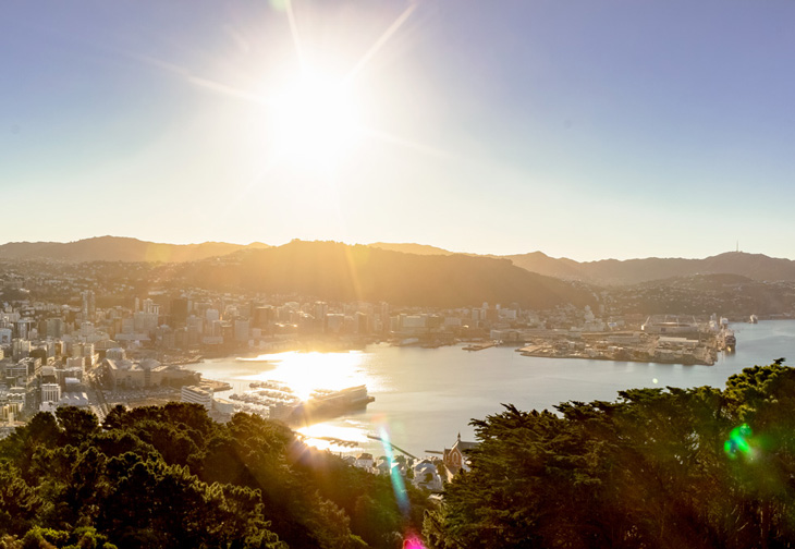 Looking over Wellington at Sunset from Mount Victoria
