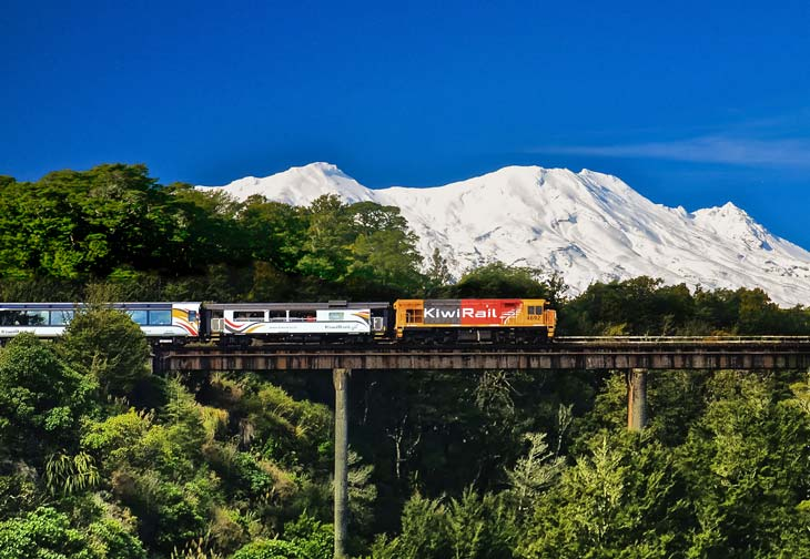 Explore the North Island on the Northern Explorer Auckland to Wellington train