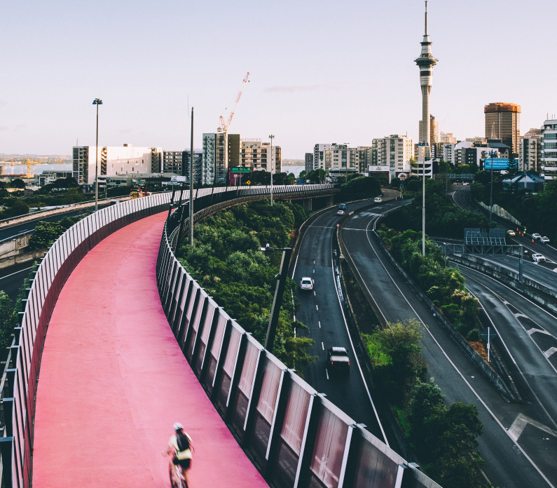 Auckland cycle path feature