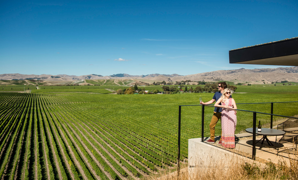 Couple at a Marlborough winery in summer