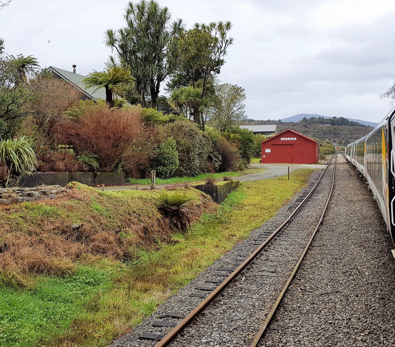 Train Stopped at Moana Lake Brunner Feature