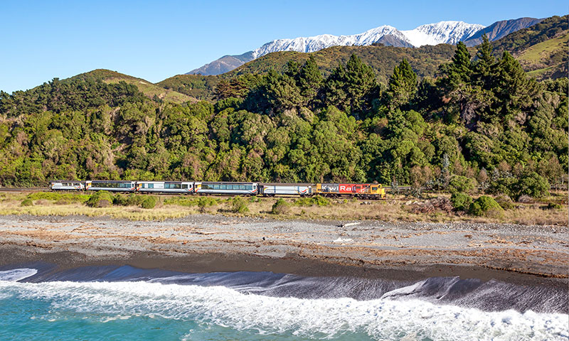 The Top Things You Must Do In Kaikoura The Great