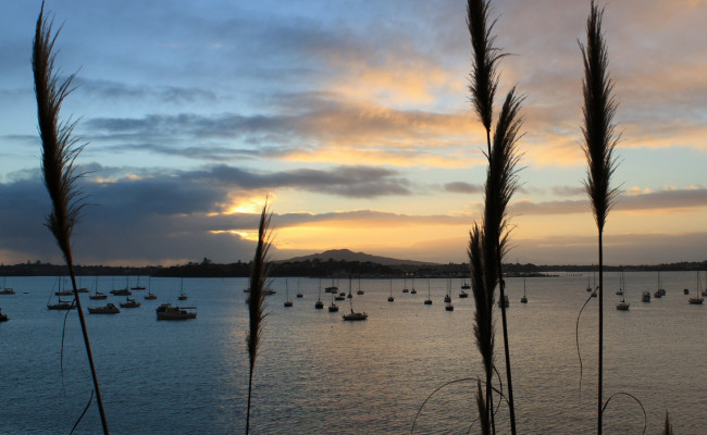 Rangitoto Sunset Feature