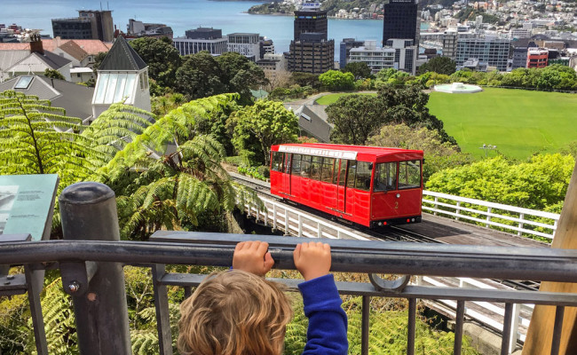 Wellington watching the cable car