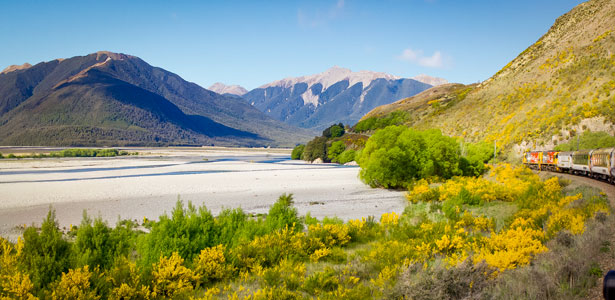 TranzAlpine Travelling along the Waimakariri River RH4533 615x300