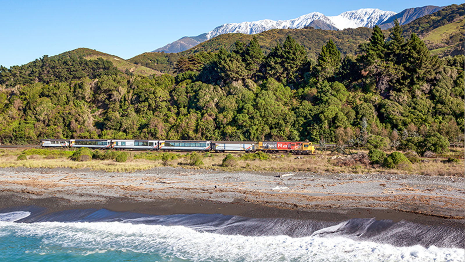 Coastal Pacific Train Official The Great Journeys Of New
