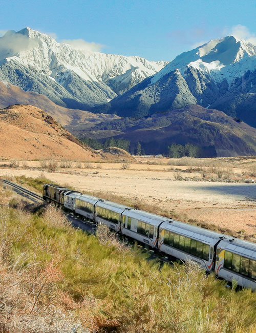 Book TranzAlpine Scenic Plus today